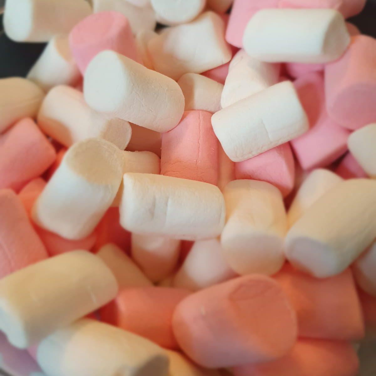 Marshmallows (Halal available)